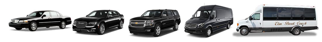 Elm Brook Limousine Services - Milwaukee Limo Service